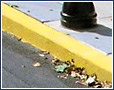 Yellow Curb in San Diego